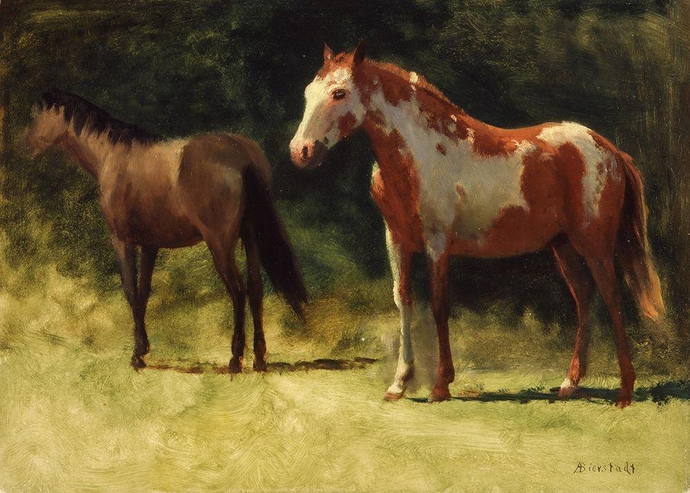 konfigurieren des Kunstdrucks in Wunschgröße Two Horses von Bierstadt, Albert