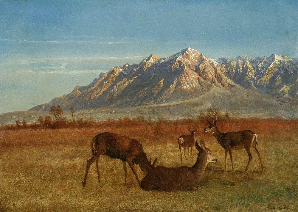 konfigurieren des Kunstdrucks in Wunschgröße Deer in Mountain Home von Bierstadt, Albert