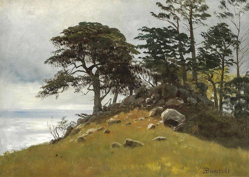 konfigurieren des Kunstdrucks in Wunschgröße Cypress Point, Monterey von Bierstadt, Albert