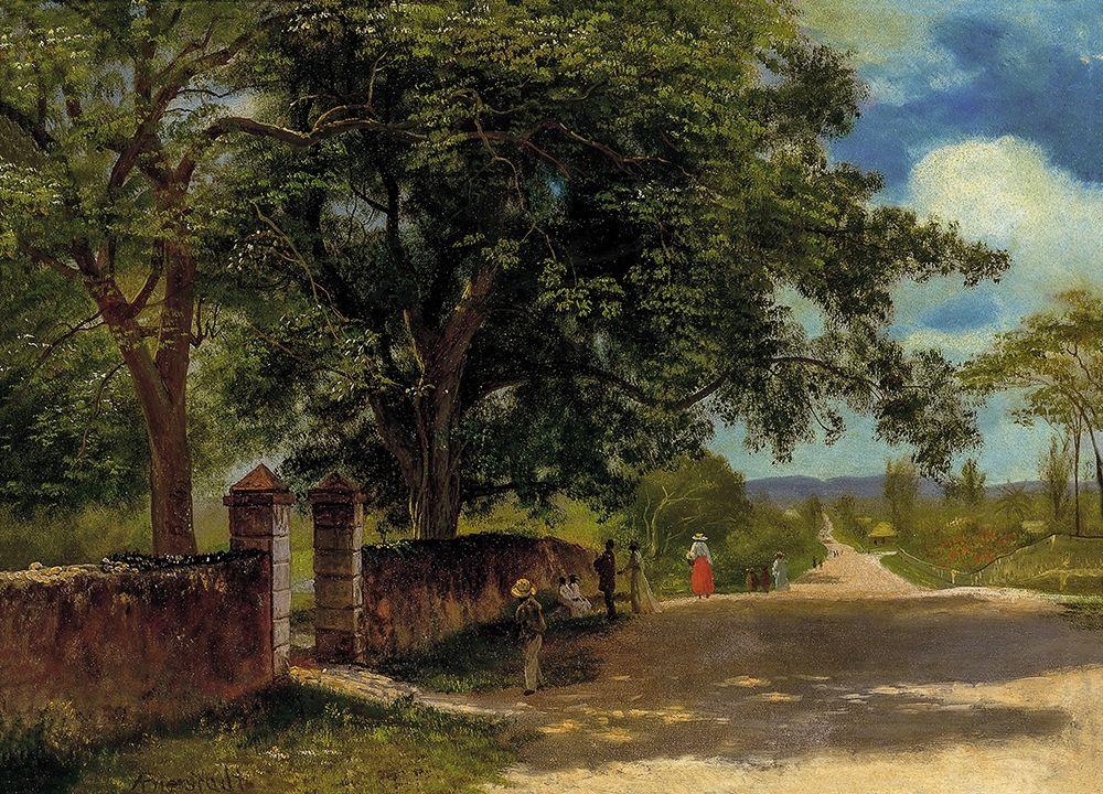 konfigurieren des Kunstdrucks in Wunschgröße Street in Nassau von Bierstadt, Albert