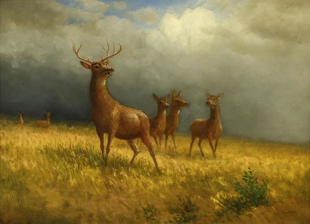 konfigurieren des Kunstdrucks in Wunschgröße Three Deer and a Stag von Bierstadt, Albert