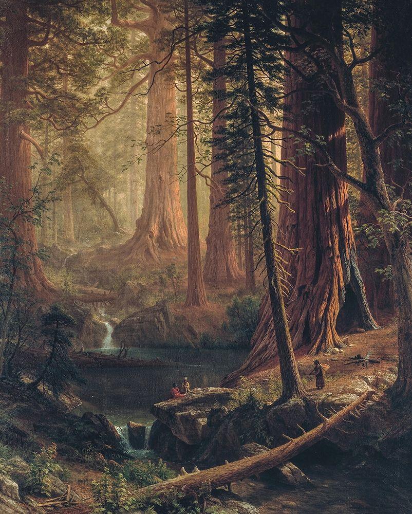 konfigurieren des Kunstdrucks in Wunschgröße Giant Redwood Trees of California von Bierstadt, Albert