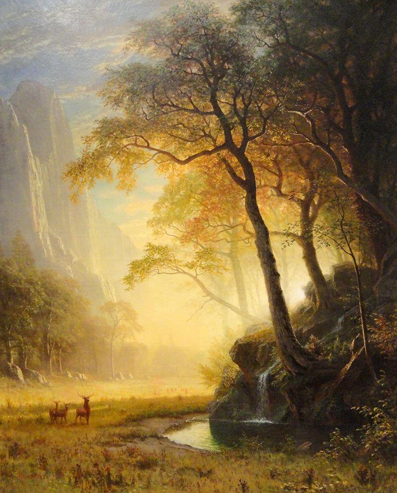 konfigurieren des Kunstdrucks in Wunschgröße Hetch Hetchy Canyon von Bierstadt, Albert