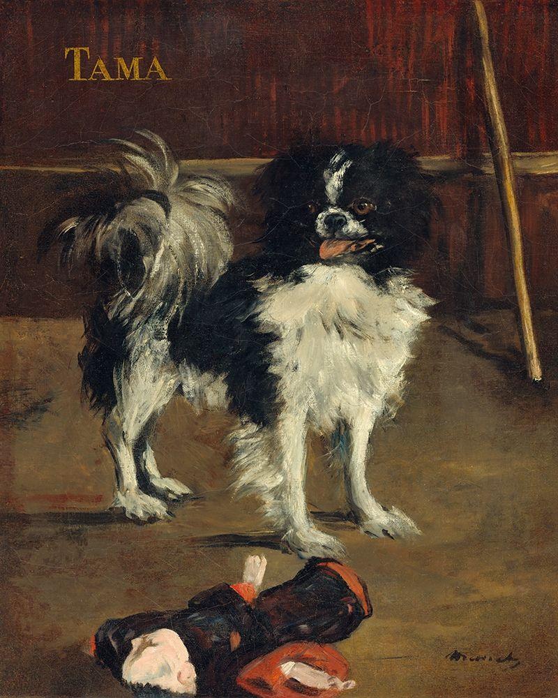 konfigurieren des Kunstdrucks in Wunschgröße TAMA von Manet, Edouard