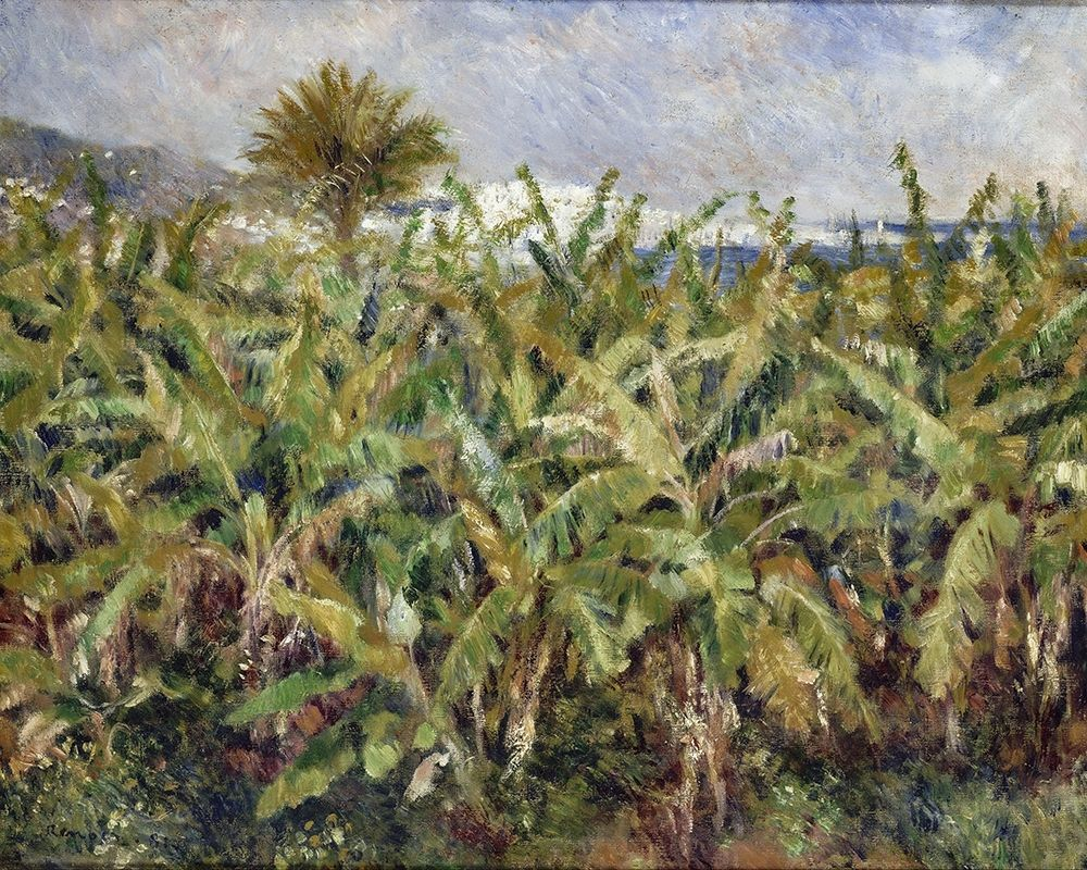 konfigurieren des Kunstdrucks in Wunschgröße Field of Banana Trees von Renoir, Pierre-Auguste