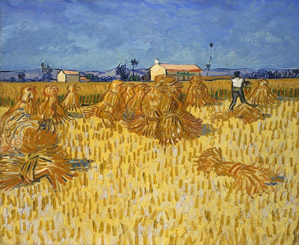 konfigurieren des Kunstdrucks in Wunschgröße Corn Harvest in Provence von Van Gogh, Vincent