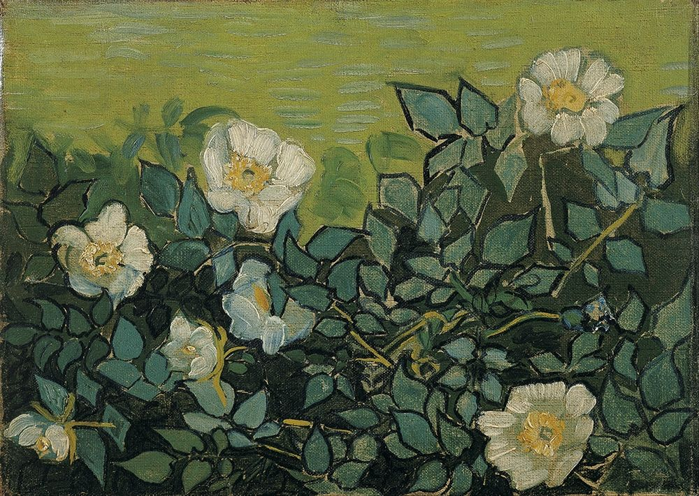 konfigurieren des Kunstdrucks in Wunschgröße Wild roses von Van Gogh, Vincent