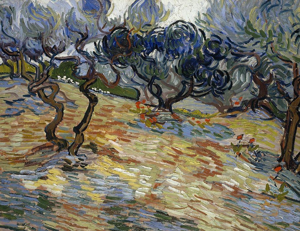konfigurieren des Kunstdrucks in Wunschgröße Olive Trees, Bright blue sky von Van Gogh, Vincent