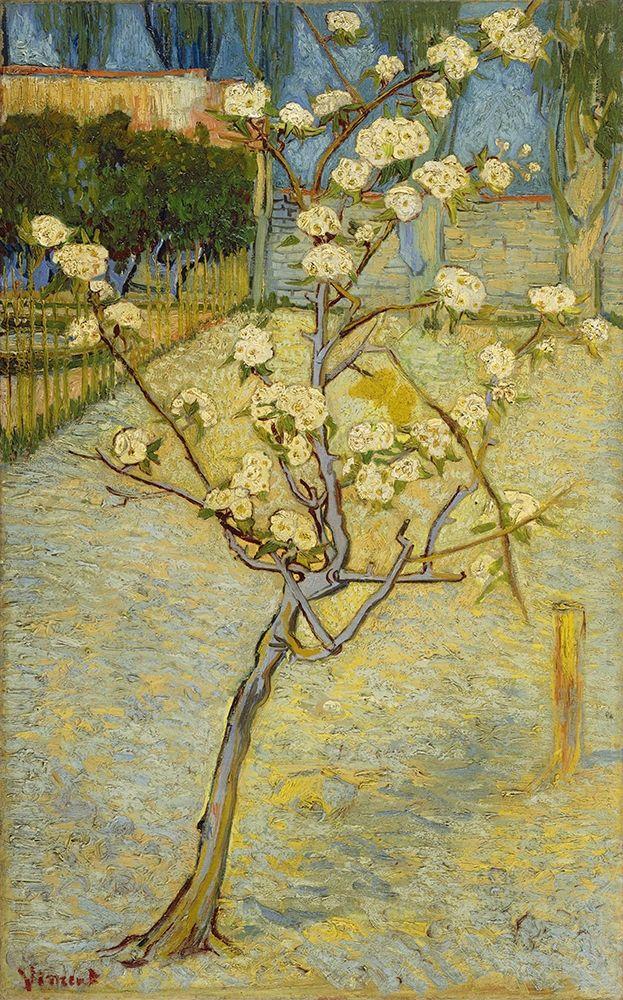 konfigurieren des Kunstdrucks in Wunschgröße Small pear tree in blossom von Van Gogh, Vincent