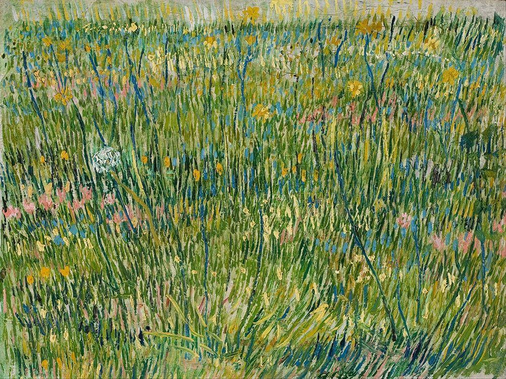 konfigurieren des Kunstdrucks in Wunschgröße Patch of grass von Van Gogh, Vincent