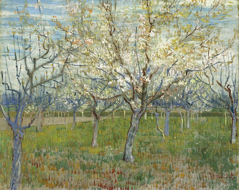 konfigurieren des Kunstdrucks in Wunschgröße Orchard with Blooming Apricot Trees von Van Gogh, Vincent