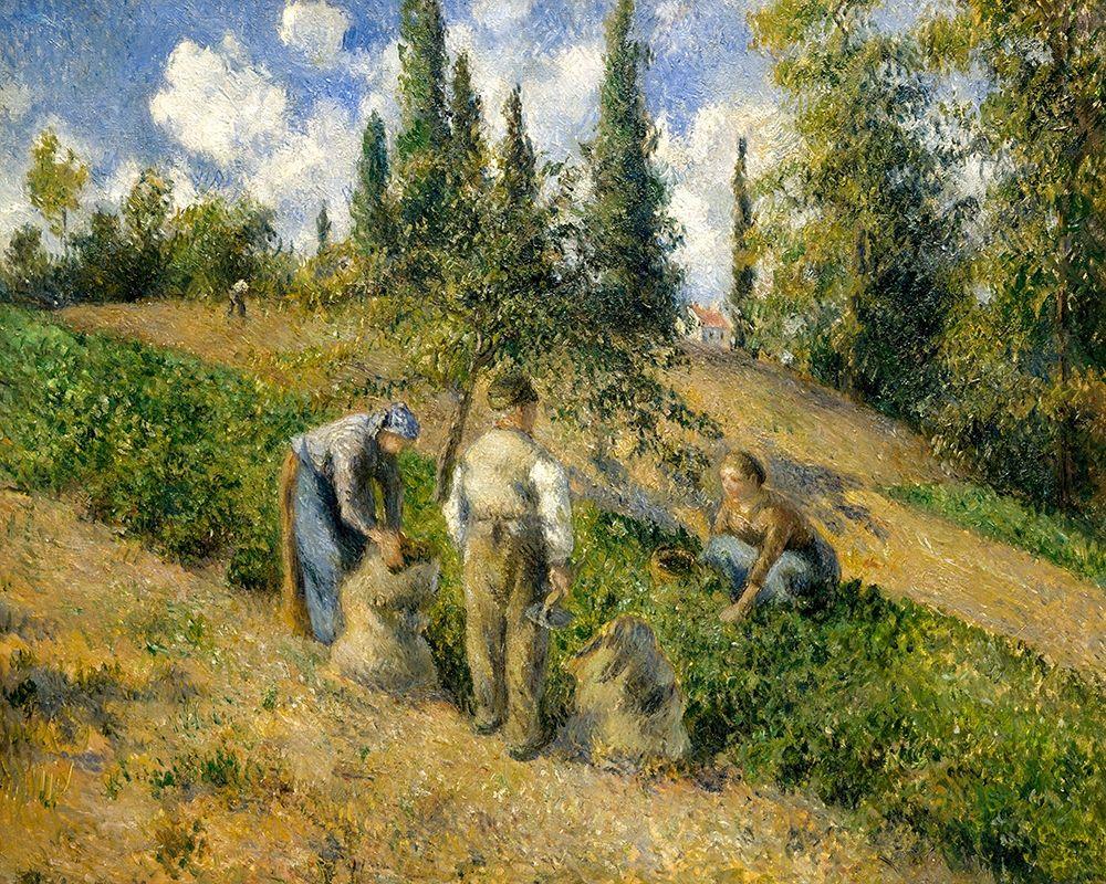 konfigurieren des Kunstdrucks in Wunschgröße The Harvest, Pontoise von Pissarro, Camille