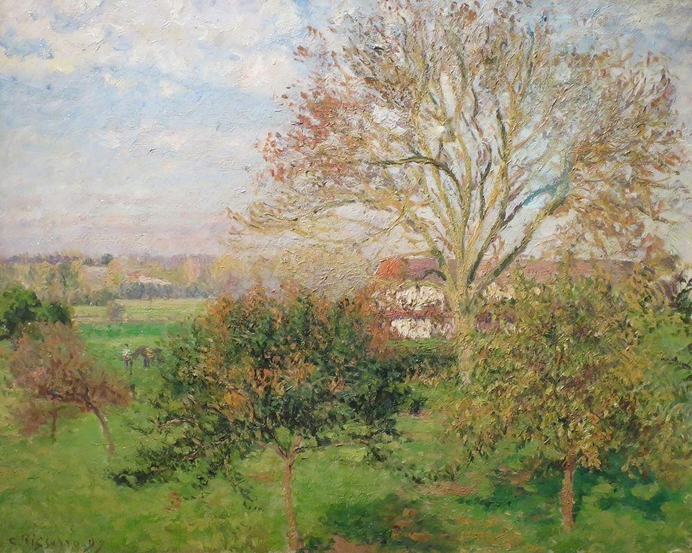 konfigurieren des Kunstdrucks in Wunschgröße The Big Walnut Tree, Autumn Morning, Eragny von Pissarro, Camille