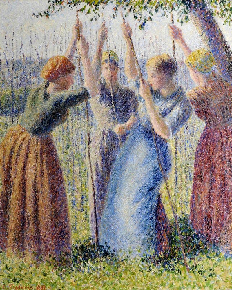 konfigurieren des Kunstdrucks in Wunschgröße Peasant women planting von Pissarro, Camille