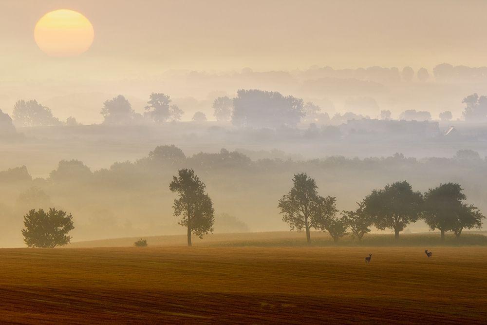 konfigurieren des Kunstdrucks in Wunschgröße Morning View von Krol (Bax), Piotr